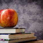Немецкая школьная система — продолжение